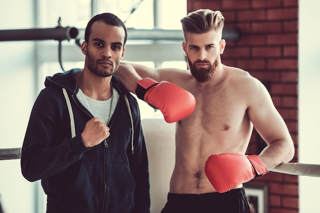 Beau jeunes boxeurs musculaires regardent la caméra.