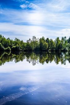 Beau lac de la forêt sauvage en journée ensoleillée d'été