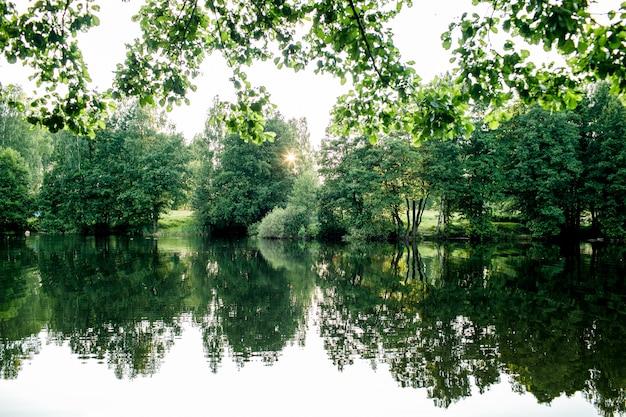 Beau Lac De Pêche Au Lever Du Soleil Avec Des Arbres Photo Premium