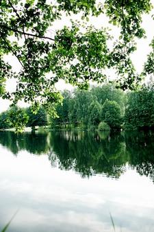 Beau lac de pêche au lever du soleil avec des arbres