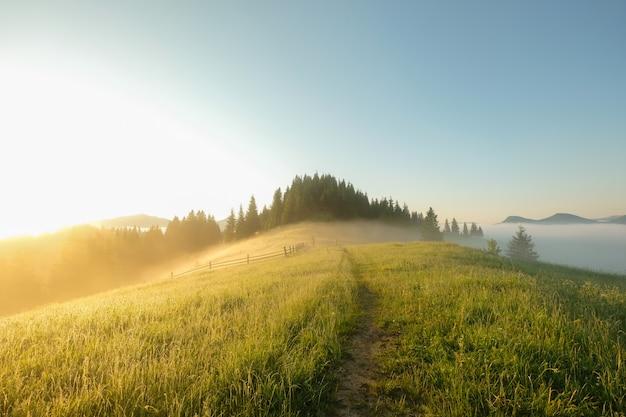 Beau lever de soleil sur fond de montagne