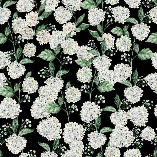Beau modèle sans couture aquarelle avec des fleurs de spirée. illustration
