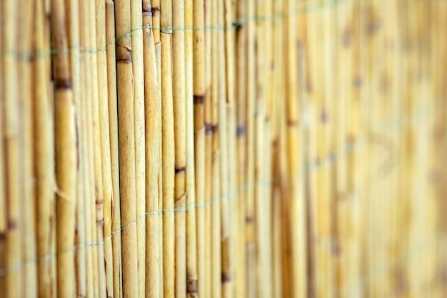Un beau mur de clôture de roseau sur fond de pyrode