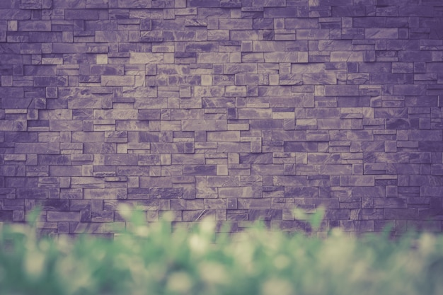 Beau mur de pierre avec de l'herbe verte