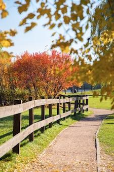 Beau parc d'automne.
