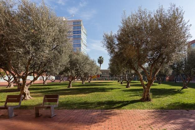 Beau parc verdoyant avec arbres et bancs dans un quartier résidentiel moderne à côté de la mer de barcelone ...