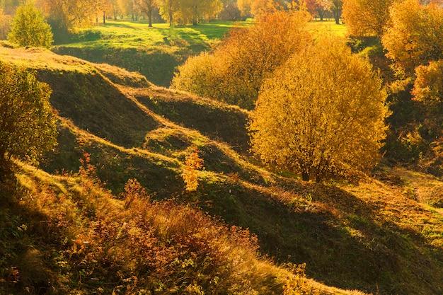 Beau paysage d'automne. arbres jaunes sur les collines