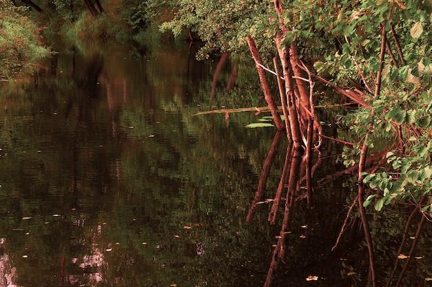 Beau paysage d'automne endroit fantastique avec lac de feuillage d'automne et forêt d'automne