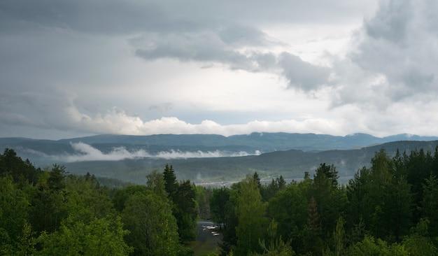 Beau paysage avec beaucoup de sapins et de montagnes