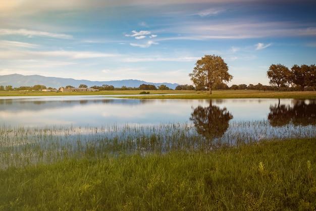 Beau paysage de la campagne