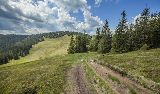 Beau paysage sur les collines de pohorje en slovénie