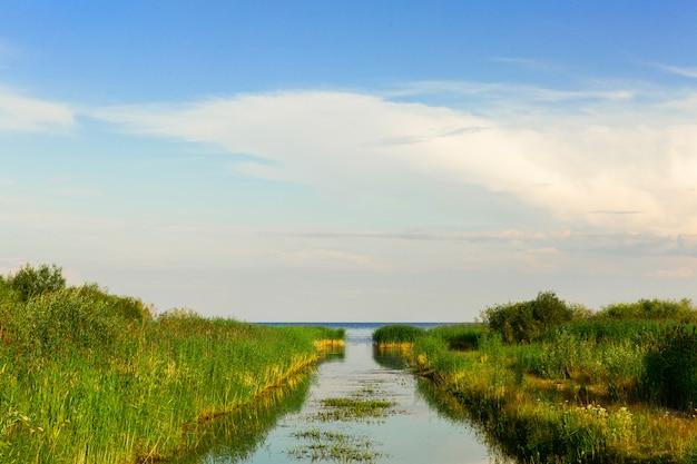 Beau paysage du chenal maritime. rivière dans l'herbe