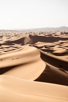 Beau paysage de dunes de sable dans une zone désertique par une journée ensoleillée