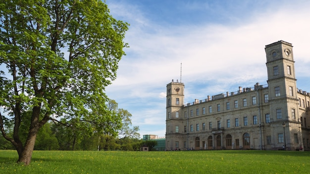 Beau paysage d'été avec un arbre près de l'ancien palais. gatchina. russie.