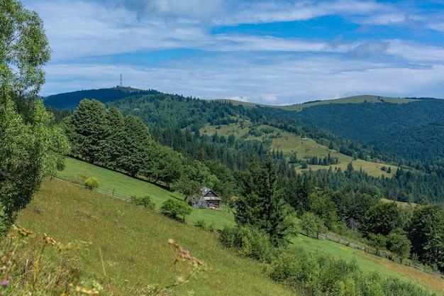 Beau paysage d'été du village parmi les montagnes de karpaty.
