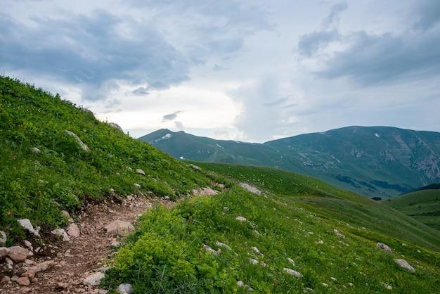Beau paysage d'été par temps nuageux dans les montagnes avec un sentier