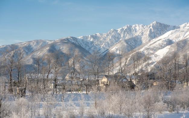 Beau paysage d'hiver de montagne