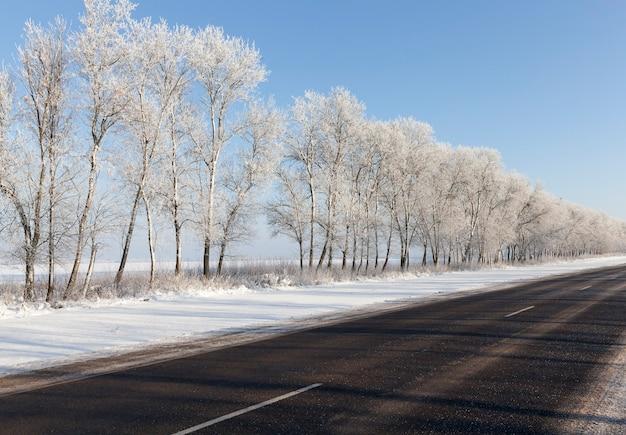 Un beau paysage d'hiver avec une route et des arbres couverts de givre après les gelées. journée ensoleillée avec ciel bleu