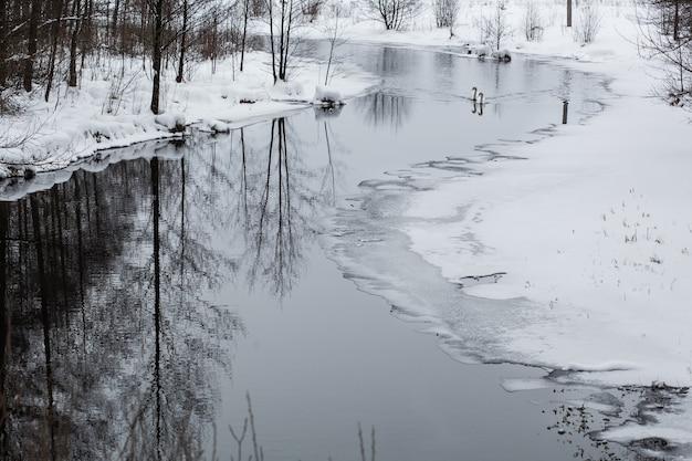 Beau paysage d'hiver tranquille