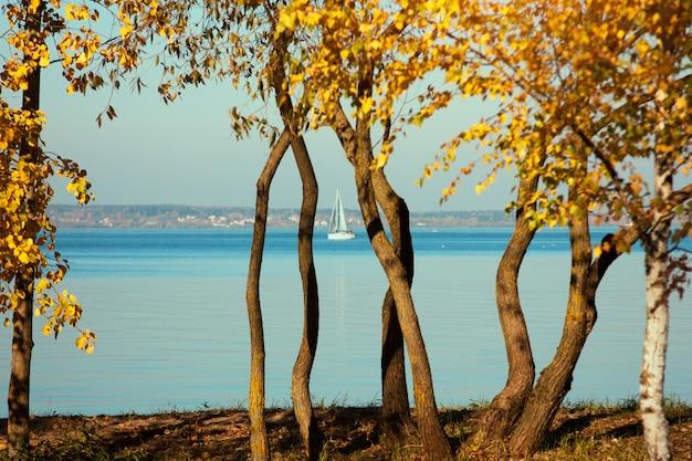 Beau paysage de lac, yacht, oiseaux et coucher de soleil.