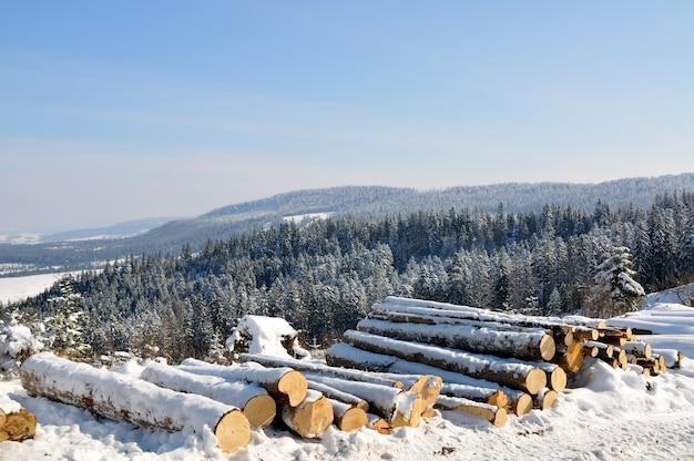 Beau paysage de montagne avec des arbres enneigés et des bûches couvertes de neige