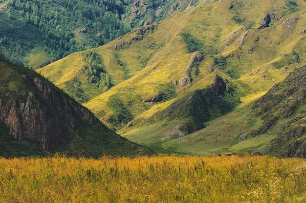 Beau paysage de montagne ensoleillé