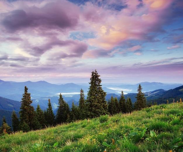 Beau paysage de montagne d'été. scène dramatique. carpates,