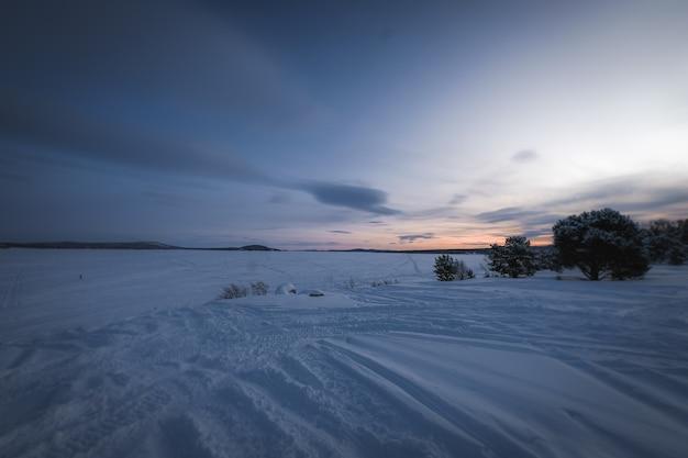 Beau paysage de nombreux arbres sans feuilles dans une terre couverte de neige au coucher du soleil