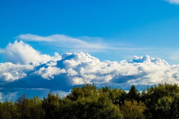 Beau paysage avec des nuages blancs duveteux sur un ciel bleu cloudscape sur une forêt verte