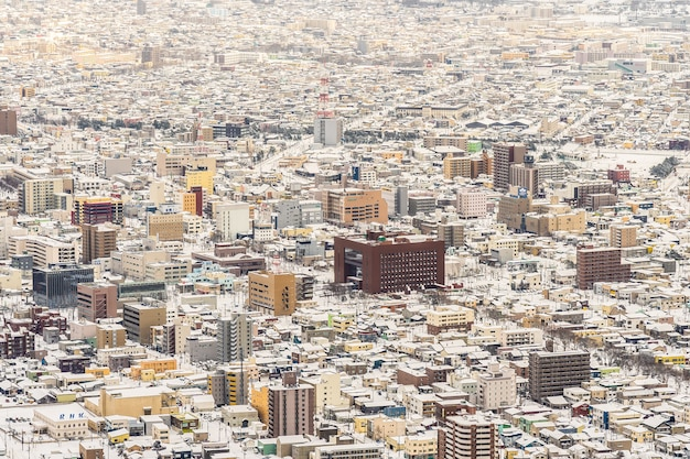 Beau paysage et paysage urbain de montagne hakodate pour regarder autour des toits de la ville
