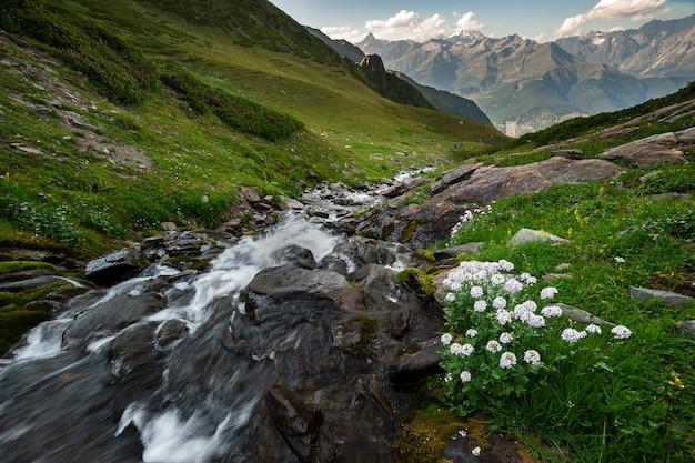 Beau paysage avec roche de rivière rapide, fleurs et hautes montagnes sur fond