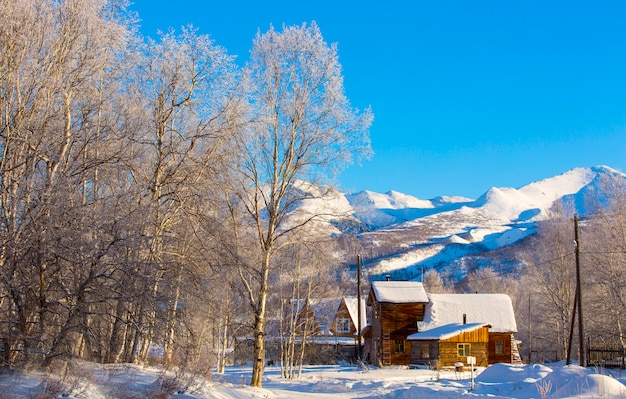 Beau paysage rural d'hiver