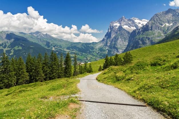 Beau paysage et sentier des alpes idylliques, montagnes en été, suisse