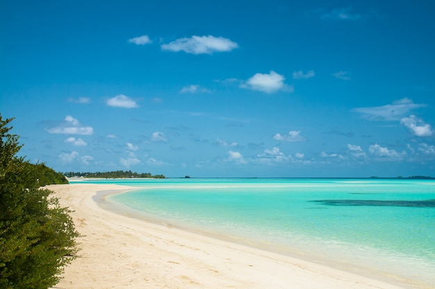 Beau paysage tropical, eau bleue et sable blanc