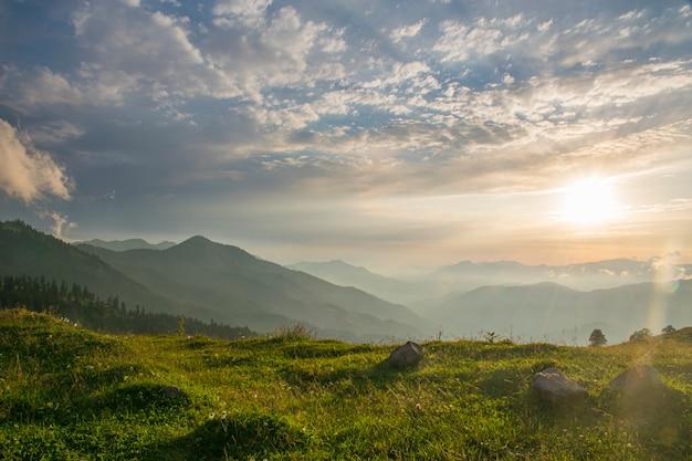 Beau paysage de vallée de montagne d'été
