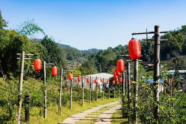 Beau paysage village chinois parmi le champ de thé, mae hong son en thaïlande