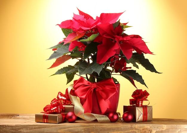 Beau poinsettia en pot de fleurs, cadeaux et boules de noël sur table en bois sur surface jaune