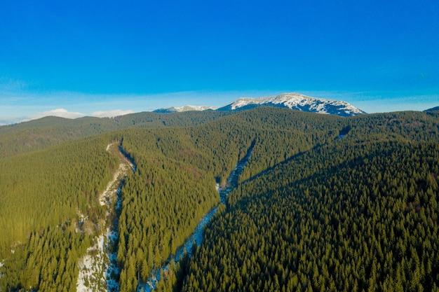 Beau printemps dans les montagnes. lieu carpates, ukraine, europe. monde de la beauté.