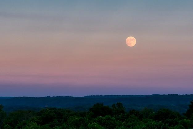 Beau tir de la grande lune grise dans le ciel du soir sur une épaisse forêt verte