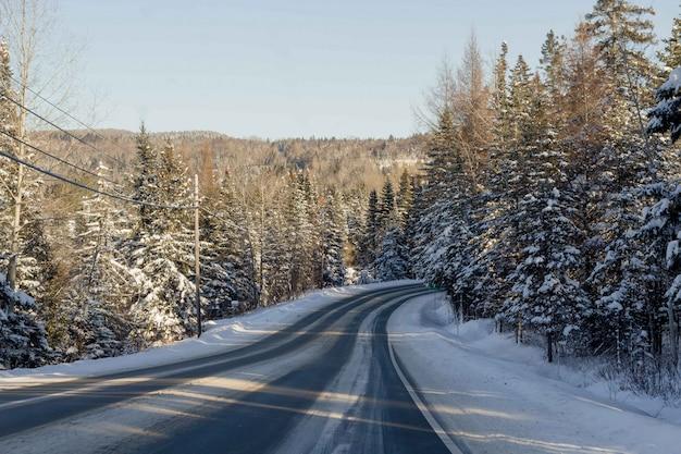 Beau tir d'une route étroite enneigée à la campagne