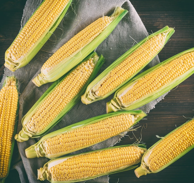 Beaucoup d'épis de maïs mûrs frais, vue de dessus