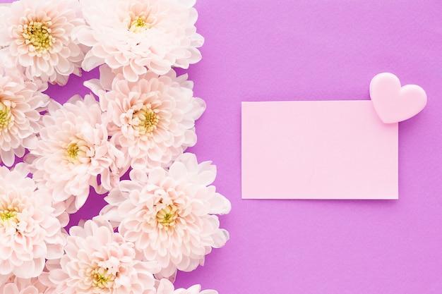 Beaucoup de fleurs de chrysanthème rose avec un centre jaune et un autocollant rectangulaire avec un clip coeur