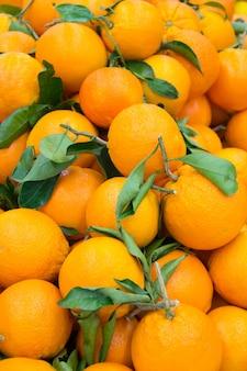 Beaucoup d'oranges fraîches et mûres