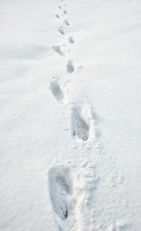 Beaucoup de pas sur la neige
