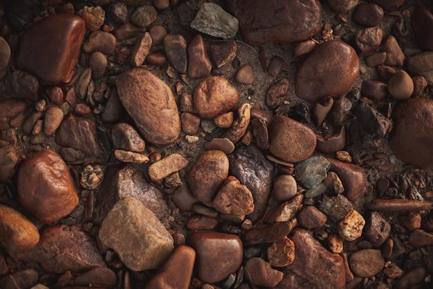 Beaucoup de pavés ronds bruns intégrés dans le sol avec différentes formes et tailles. vue zénith