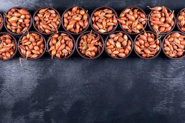 Beaucoup de petits oignons ou échalotes dans des bols vue de dessus sur une table sombre