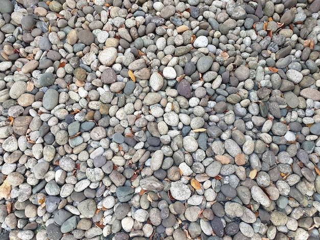 Beaucoup de pierres lisses grises et brunes avec des feuilles sèches au sol.