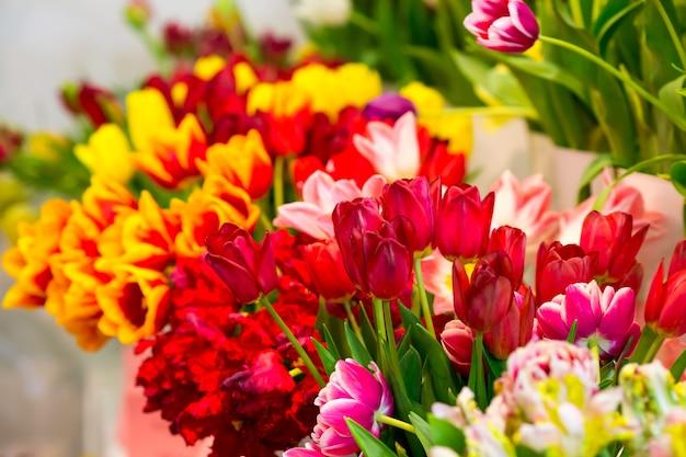Beaucoup de tulipes fraîches dans la boutique