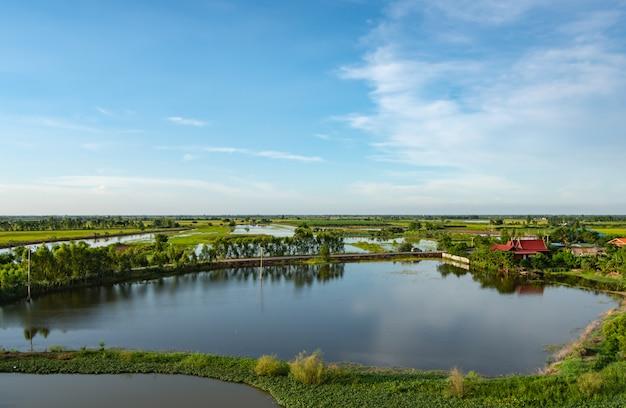 La beauté des champs et des étangs à poissons à la campagne.