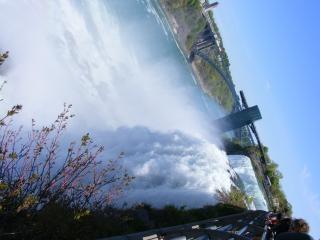 La beauté des chutes du niagara, de la pierre